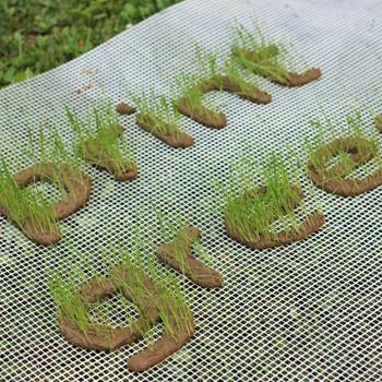 Startup müsli #20: Tiskaj zeleno